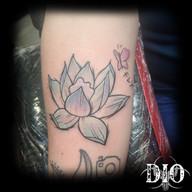sketchy lotus & butterfly.jpg
