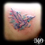 watercolor seagull.jpg