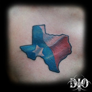 texas outline with state flag.jpg