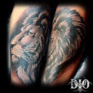 lion-head.jpg