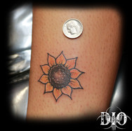 tiny-sunflower2.jpg