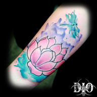 watercolor lotus & dragonfly.jpg