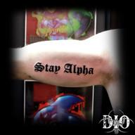 script-stay-alpha.jpg