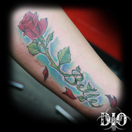 Belle script & rose falling petals.jpg