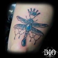Paisley-dragonfly.jpg