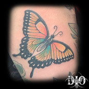 big colorful butterfly on thigh.jpg