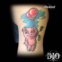 piglet healed