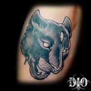 third eye panther.jpg
