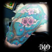 cherry blossom half sleeve - HEALED.jpg