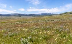 Little Daniel Ranch Daniel Wyoming_-52