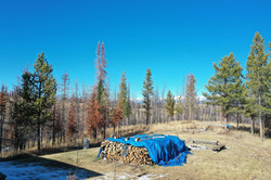 Wood pile and firepit