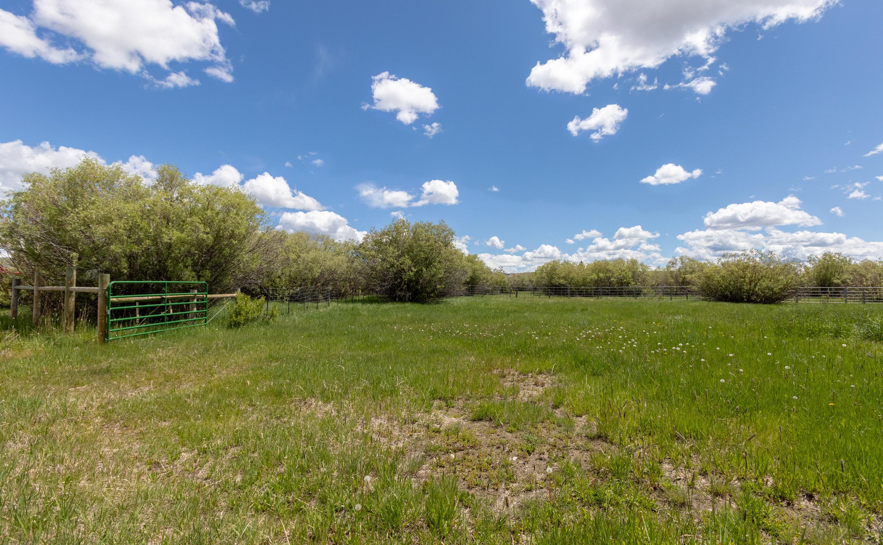 pasture (1 of 1)