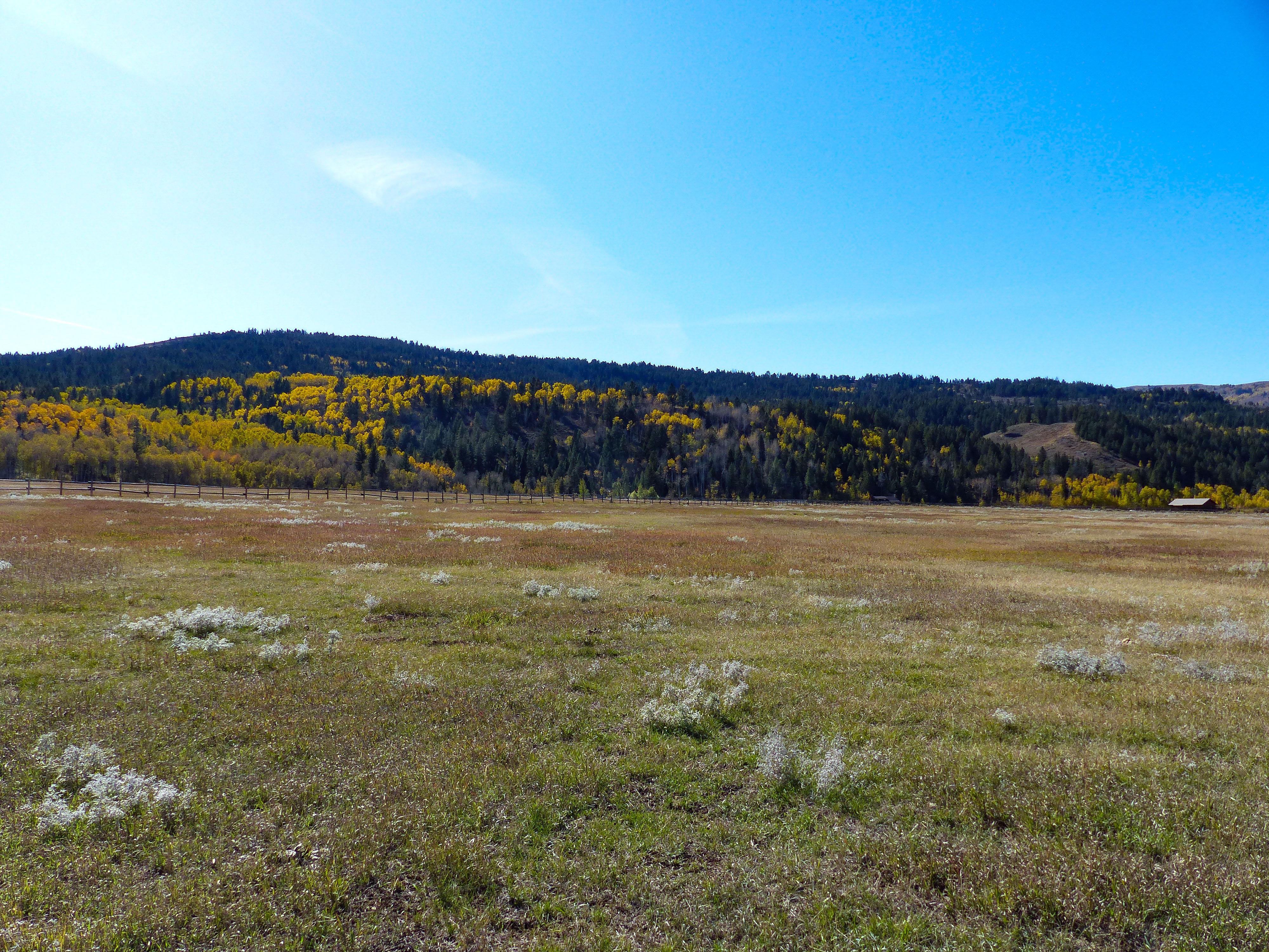 14.73 acres