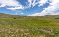 Little Daniel Ranch Daniel Wyoming_-50