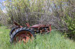 old tractor (1 of 1)