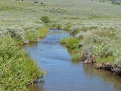 Irrigation Ditch 2