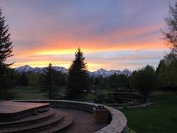 Evening in the Backyard