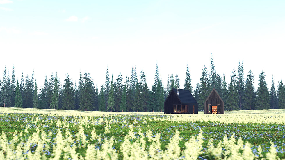 Small House in the Meadow 5.jpg