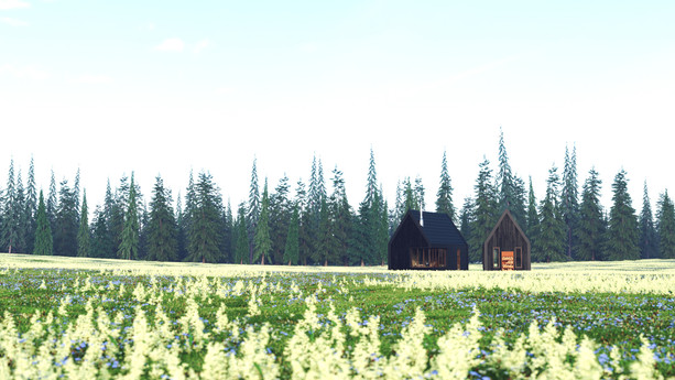 Small House in the Meadow Exterior