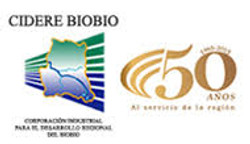 Logo CIDERE