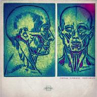 SIMBIOSE - MERCURIUM EP