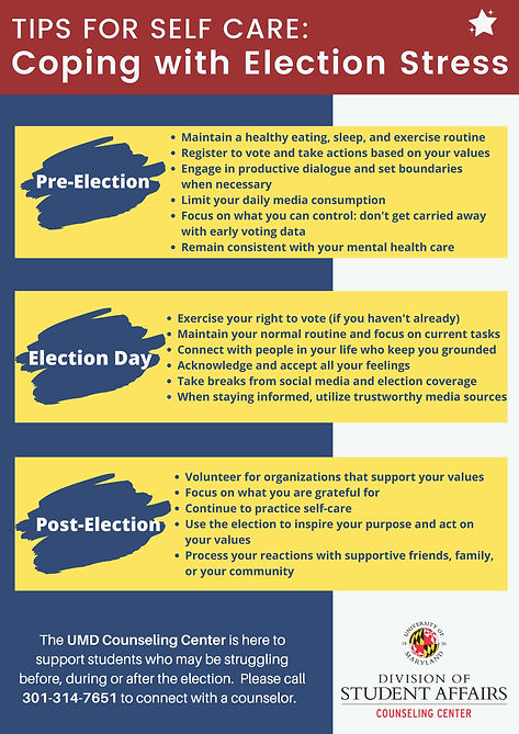 Election Stress One-Pager.jpg