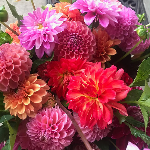 6 week summer bouquet subscription for 2020