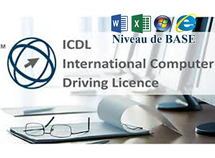 icdl1 copie.png