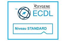 ecdl_STANDARD LONG.png