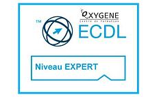ecdl_EXPERT LONG.png