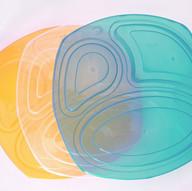 Food Tray Lid Colors_edited.jpg