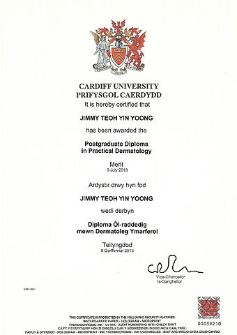 Postgrad Diploma Cardiff-page-001.jpg