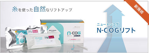 N-COG_mainVisual.jpg