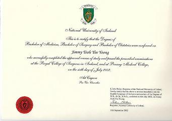 University of Ireland-page-001_edited.jp