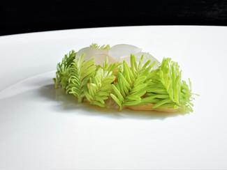 Gachas Manchegas-Abeto y Almendra cristal