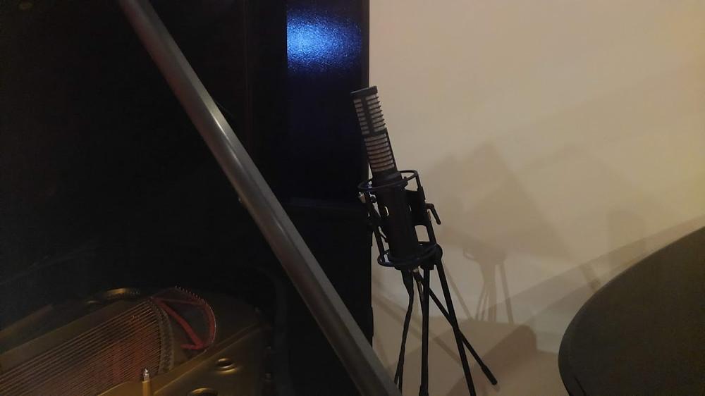 HUM AUDIO RS-2 ステレオマイクロフォン