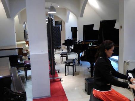 ヨーロッパの旅 カールスルーエ – ホルストのスタインウェイハウス