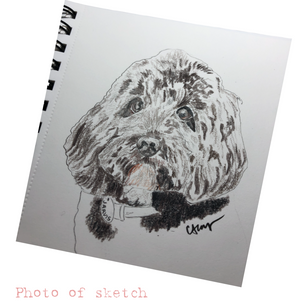 Snap of sketch
