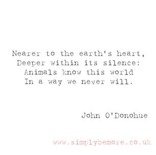 John O'Donohue nails it again!