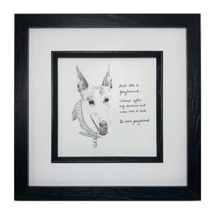 Dexie the Greyhound