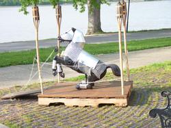 equine on main 055