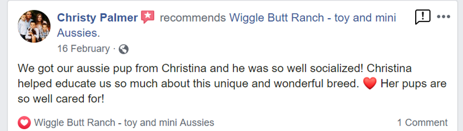 Christy palmer review.png