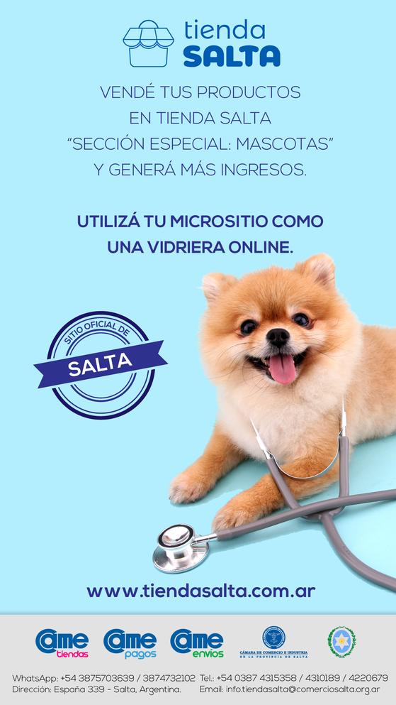 Flyer-mascotas.png