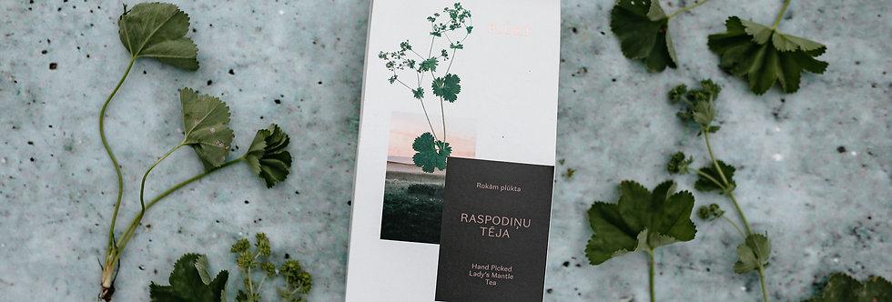 Organic Lady's Mantle Tea