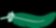 IAATE_logo-2.png