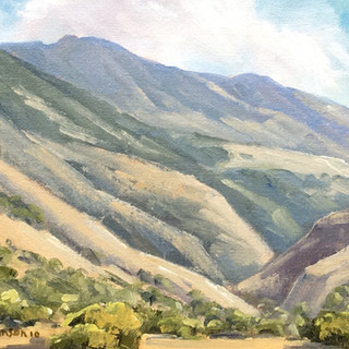 Afternoon in Sycamore Canyon