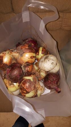 Customer grown onions