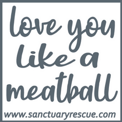 Love You Like A Meatball Decal
