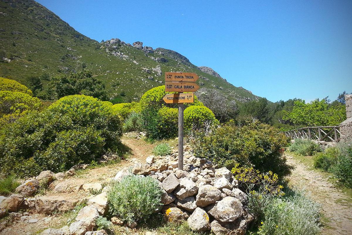 1484208859-trekking-marettimo004