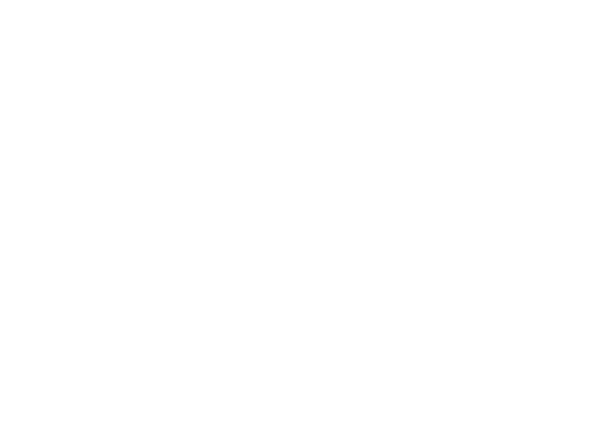 logo White pt.png